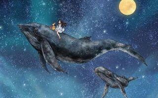 Благоприятный лунный календарь на август