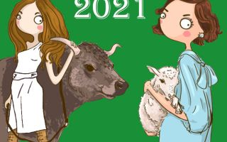 Год Белого Металлического Быка 2021 для Козы (Овцы): прогноз для всех сфер жизни
