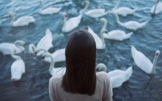 Пора бы нам уже расстаться: как разрывает отношения Водолей
