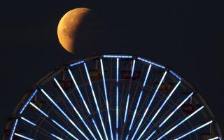 Какая сейчас луна: растущая или убывающая