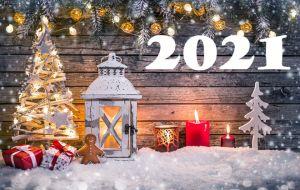 Новый Год 2021: в каком цвете встречать, чтобы задобрить Быка