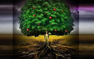 Упражнение Большое Дерево Цигун: тонкости медитации