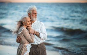 Сбавь обороты и угомонись: как Тельцам прожить долгую и счастливую жизнь
