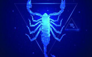 Карьера и финансы, здоровье и любовь: 2021 год для знака Скорпион