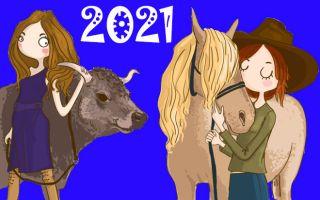 Год Быка для Лошади: полноценный гороскоп на весь 2021