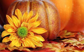 12-13 октября: народные приметы и предостережения