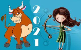 «Период возможностей для сильной личности»: гороскоп на год Быка для Стрельцов