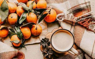 «Желанья сбудутся, колёса крутятся»: народные приметы и ритуалы на весь декабрь